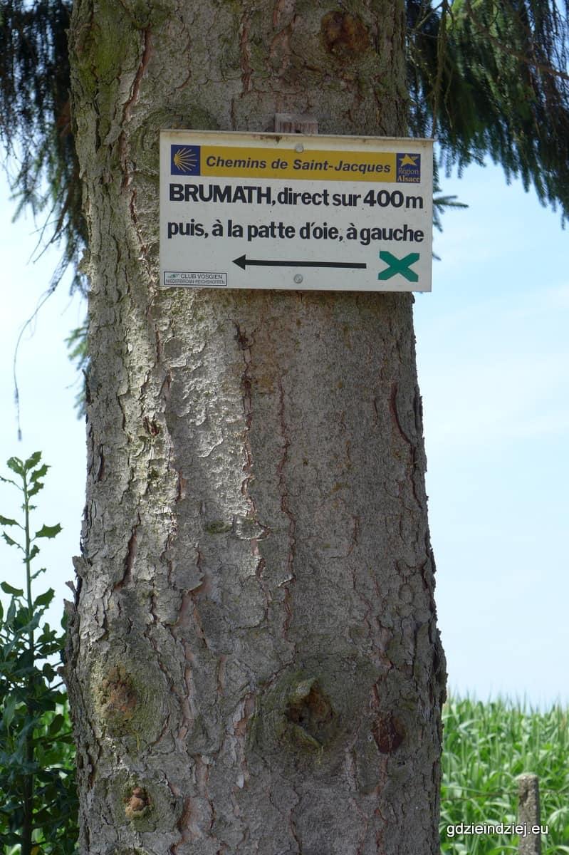 Camino Brumath