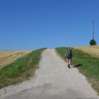Smutny Pielgrzym w drodze na Trzeci Biegun, czyli Marek Kamiński i jego Camino