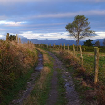 Camino Primitivo – góry na końcu Drogi