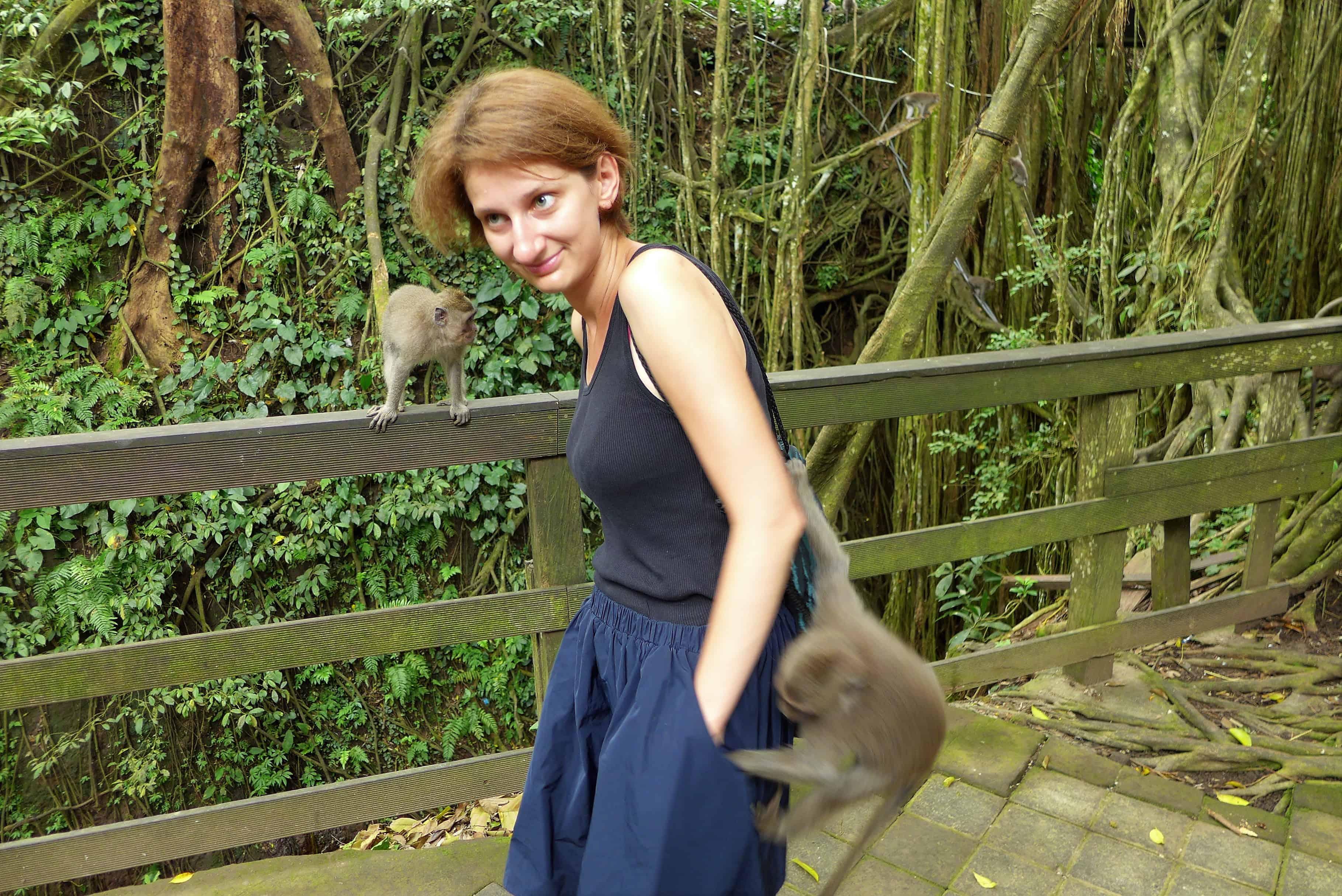 Zwiedzanie Bali, Ubud