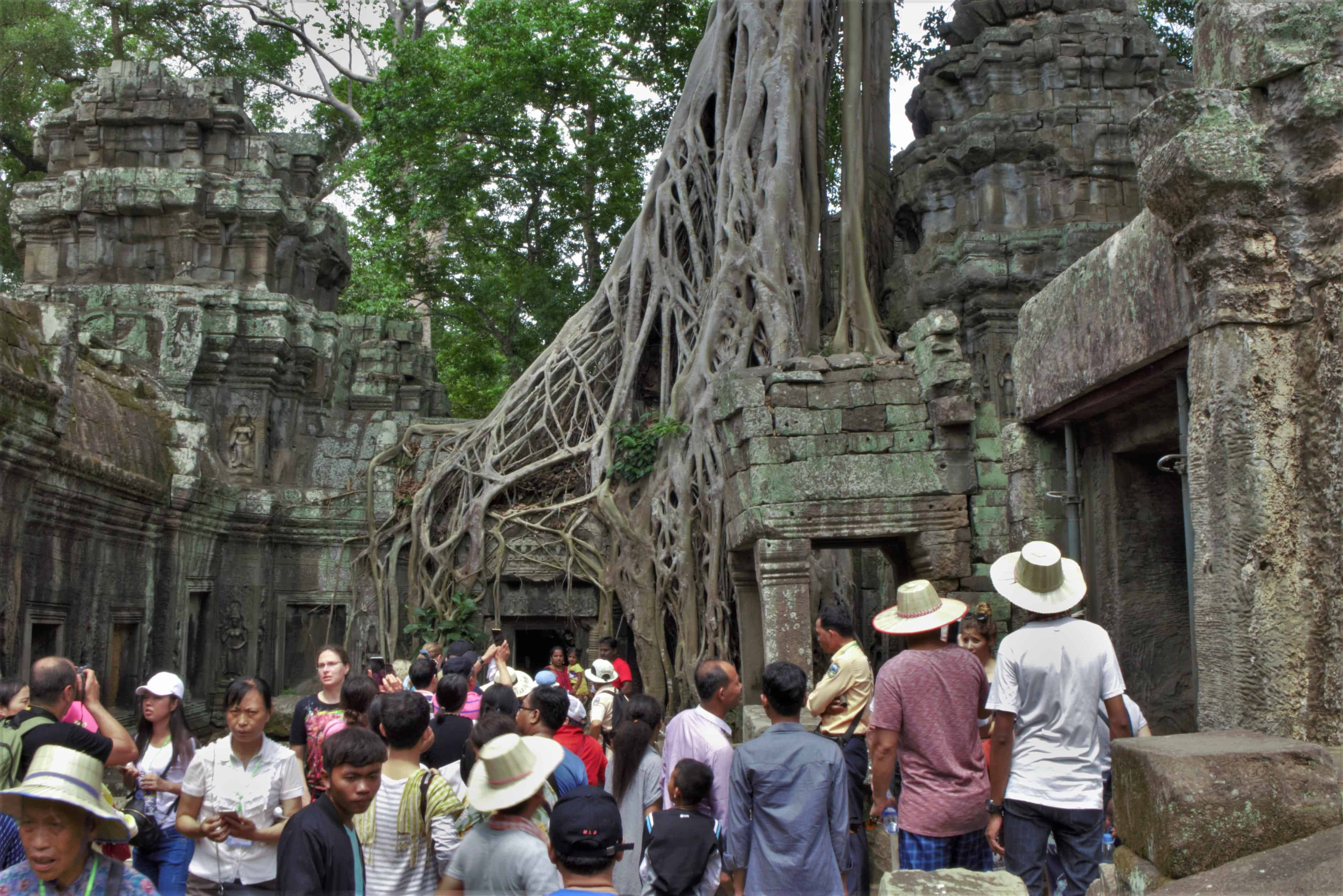 Ta Prohm, zwiedzanie Angkor Wat