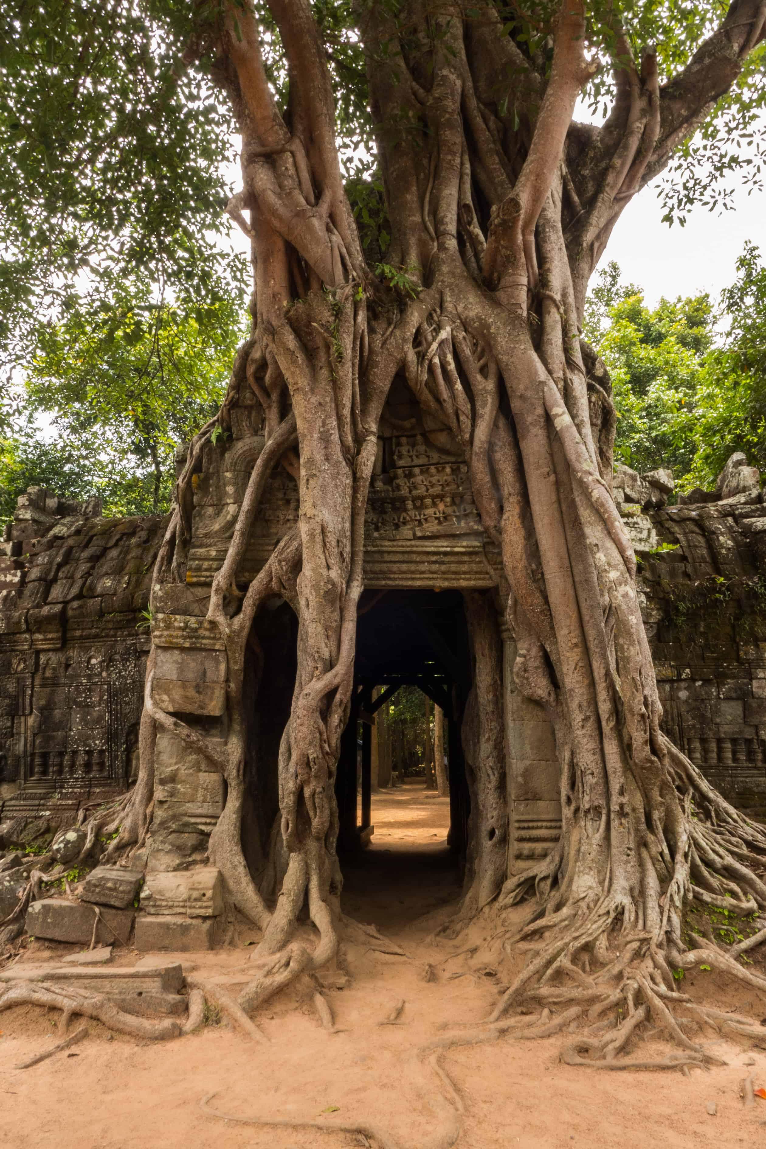 Ta Som, zwiedzanie Angkor Wat