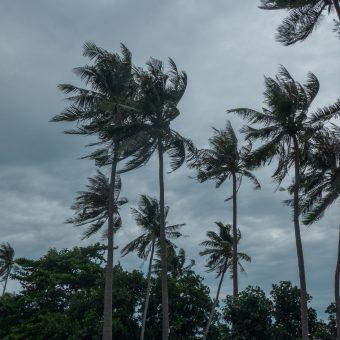 Koh Tonsay, czyli Wyspa Królicza w porze deszczowej