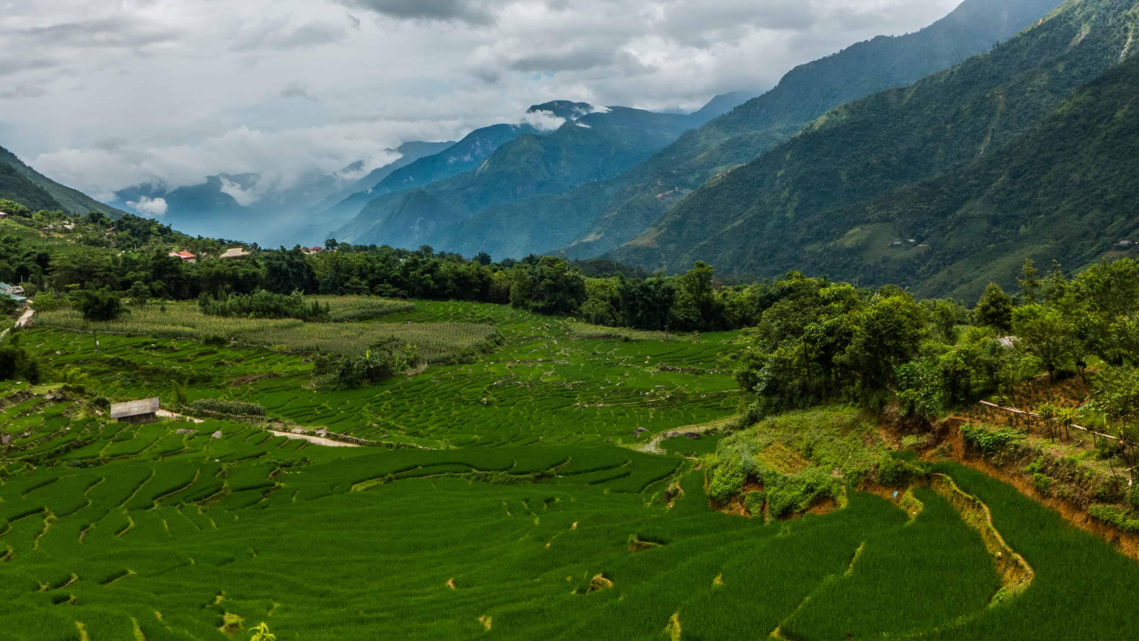 Hau Thao; Sapa; tarasy ryżowe
