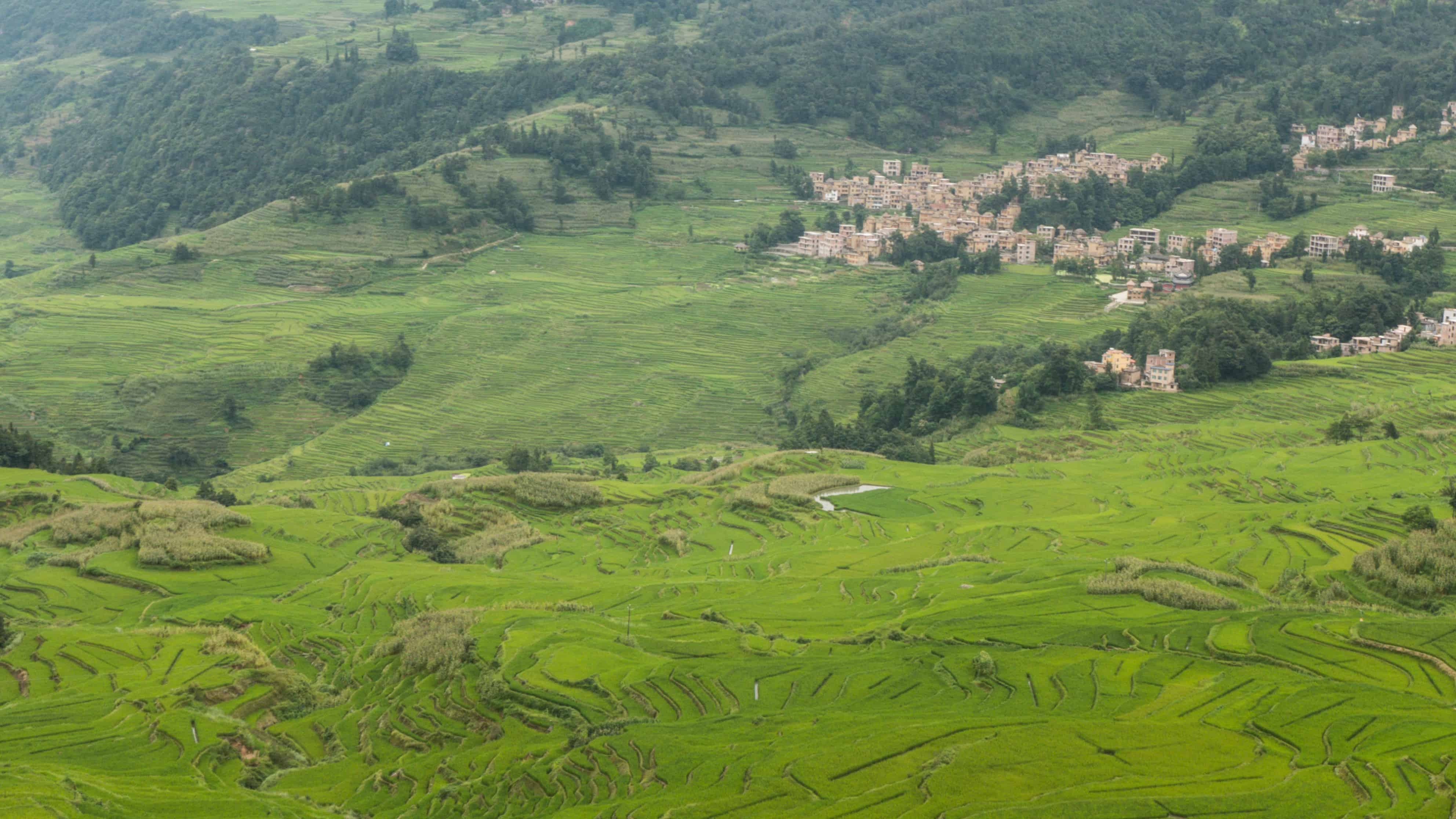 Duoyishu Scenic Area; Yuanyang