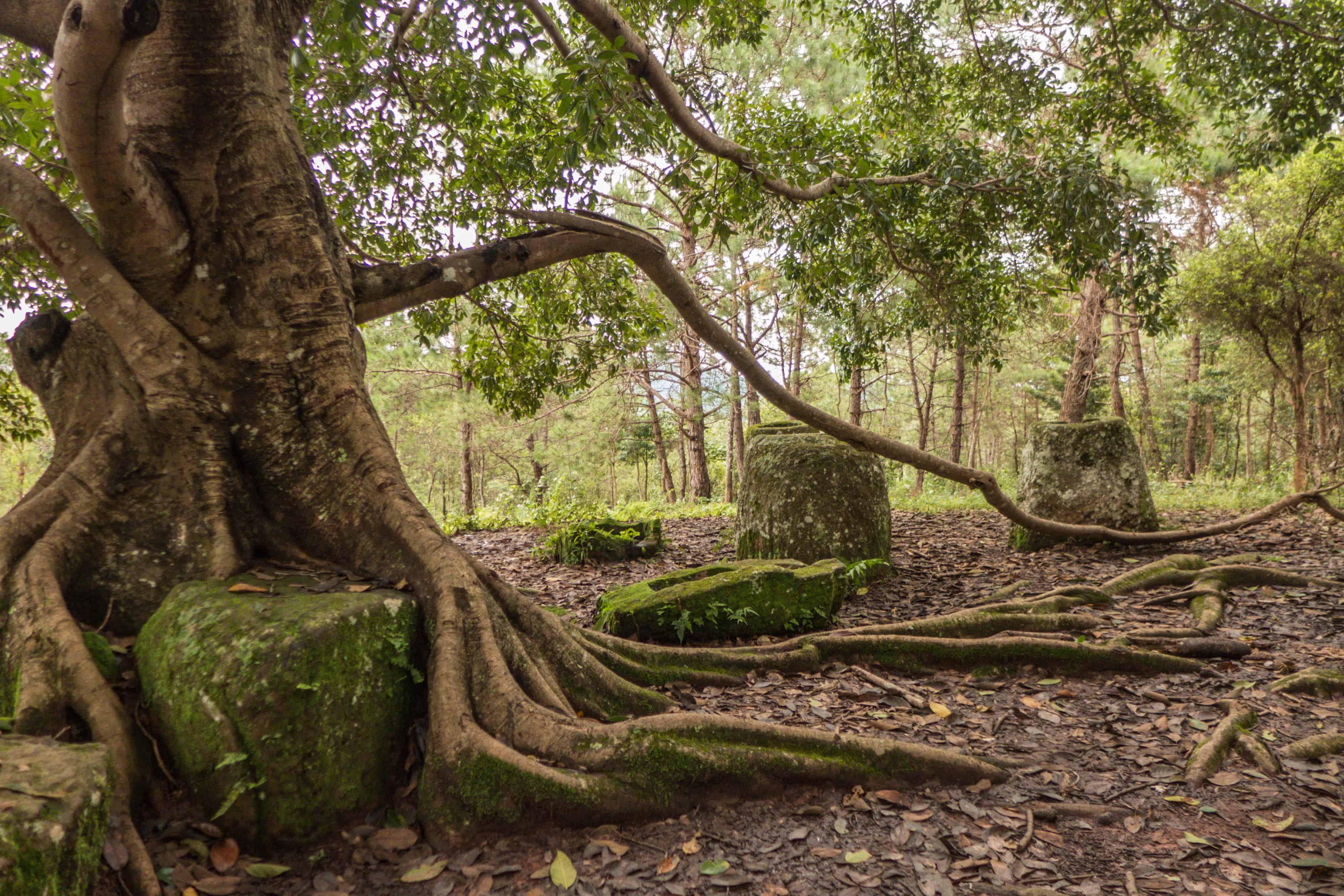 Jar Site 2; Równina dzbanów; Laos