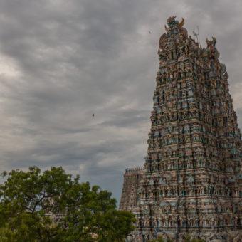 Maduraj – nasz pierwszy przystanek w podróży po Indiach