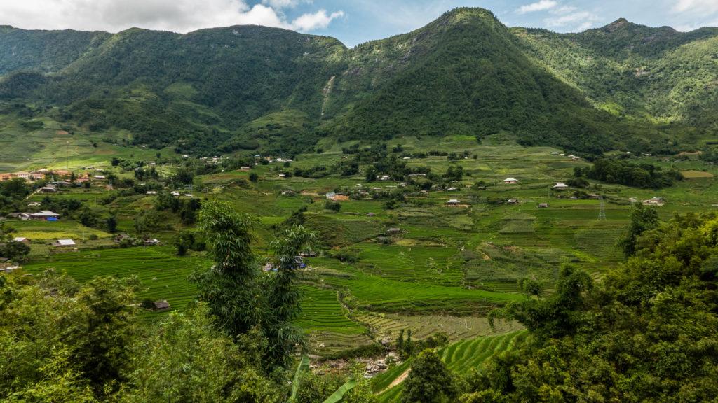 Wietnam, Hau Thao