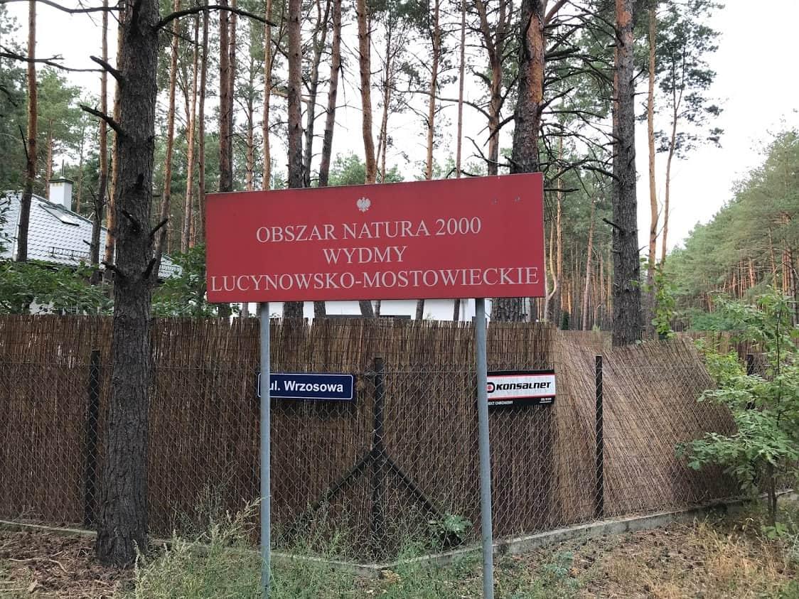 Wydmy Lucynowsko-Mostowieckie